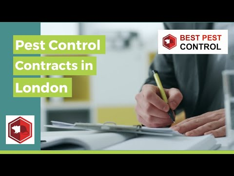 PEST CONTROL CONTRACTS LONDON _ FAST, RELIABLE SOLUTIONS FROM BEST PEST CONTROL