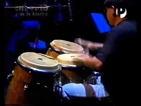 Cesar Peredo - Cesar Peredo playing Nardamelon by Felipe Pumarada