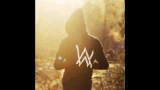 Alan Walker - 30 min mix