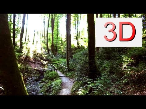 Ultra HD 3D Film: Summer Forest Harmony (4K Resolution)
