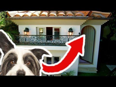 Tieto búdy pre psa sú pravdepodobne drahšie ako váš dom