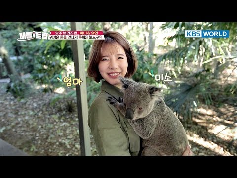 Cute Koala cuddled up in Sunny's arms [Battle Trip/2017.10.22]
