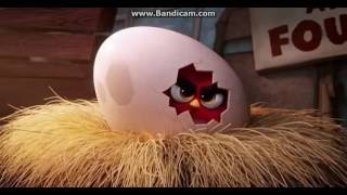 The Angry Birds Movie - Red's Angry Story