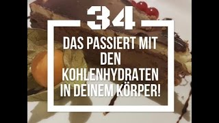 Built by Science #34 - Der Kohlenhydratstoffwechsel 1