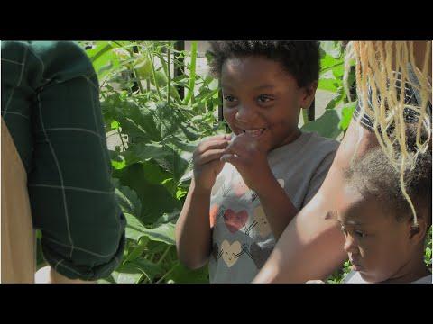 screenshot of youtube video titled EdVenture's Eco Garden