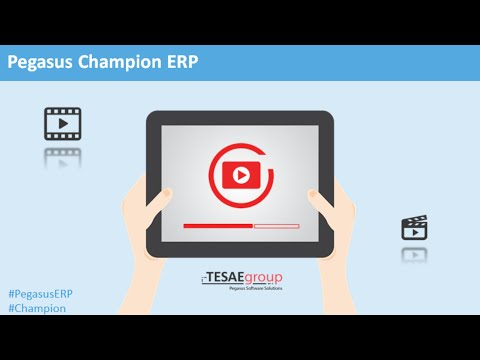 Pegasus Champion ERP Start Up