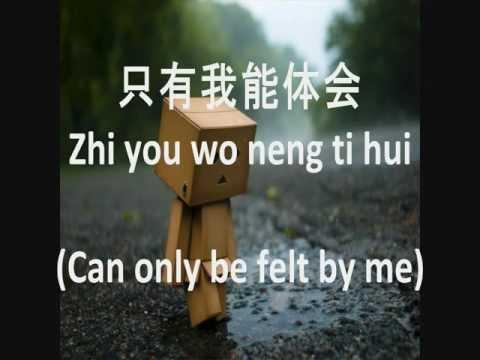 当你孤单你会想起谁 -- Pinyin and English Sub - 張棟樑 (Nicholas Teo)