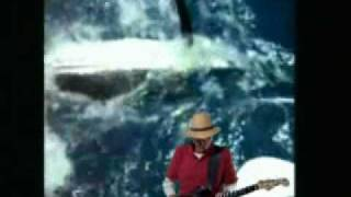 When the marlin strikes(c)2010jlsJimmYSixStrinGtm