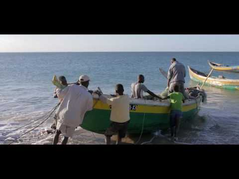 Creating a Food-Secure Future for Coastal Communities in Mozambique