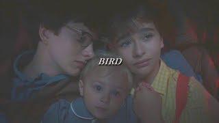 baudelaire orphans // bird
