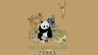 [8-Bit] TTNG - Zebra