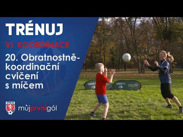 VI. Koordinace - Obratnostně-dovednostní cvičení s míčem