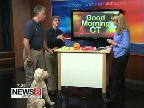 Bark Busters - Halloween Safety Tips for Dogs - Richard & Vicki Horowitz
