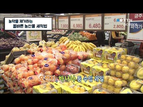 농약을 제거하는 올바른 농산물 세척법 / YTN 사이언스