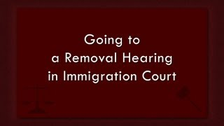 Going to a Removal Hearing in Immigration Court