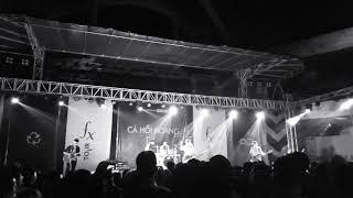 CÔ ẤY - Cá Hồi Hoang - FXtour 2019