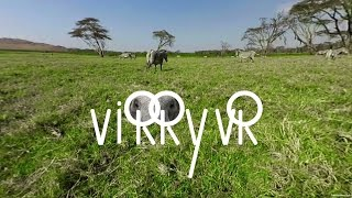 Virry vr disponible sur playstation vr :  bande-annonce