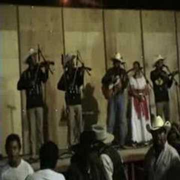 HUAPANGO LA PETENERA CON LOS LEONES DE LA SIERRA