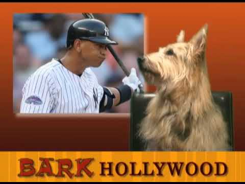 Bark Hollywood - Episode 7