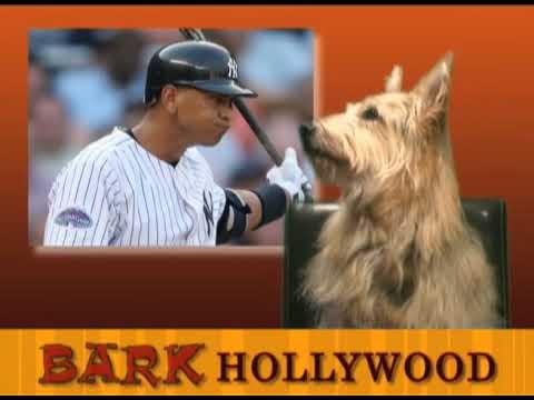 Bark Hollywood - Episode 7