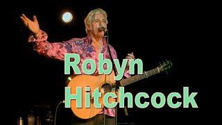 Robyn Hitchcock - Sydney - February 2019