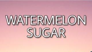 Harry Styles - Watermelon Sugar ( Animated  Video )