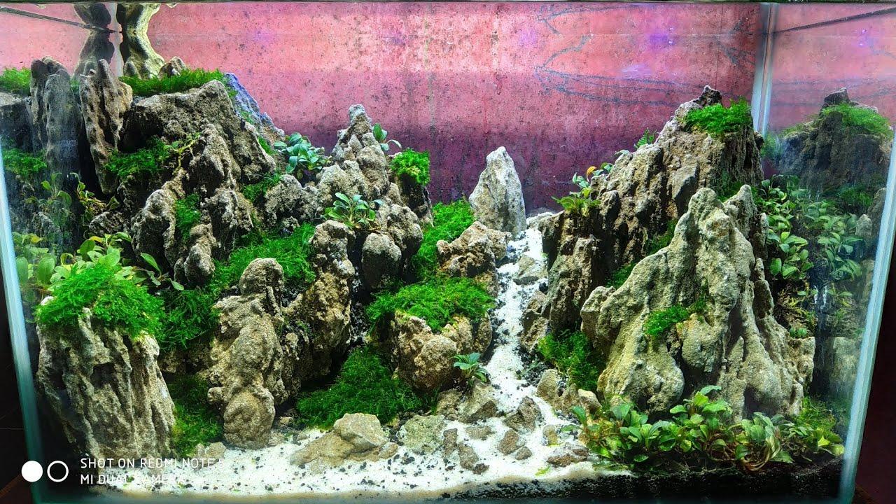 28 Aquascape Tema Bukit