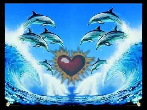 Baixar Dolphins Reiki bells every 3 mins - Delfines Reiki campanas cada 3 minutos
