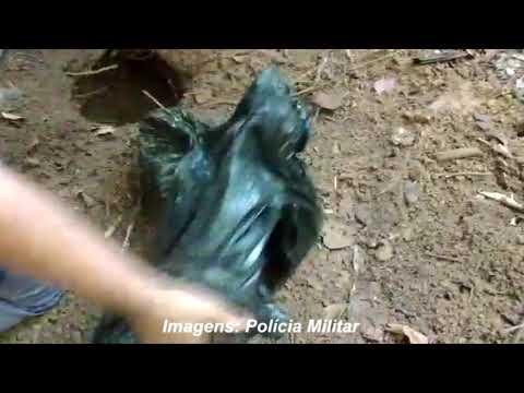 PM encontra droga enterrada em Marília