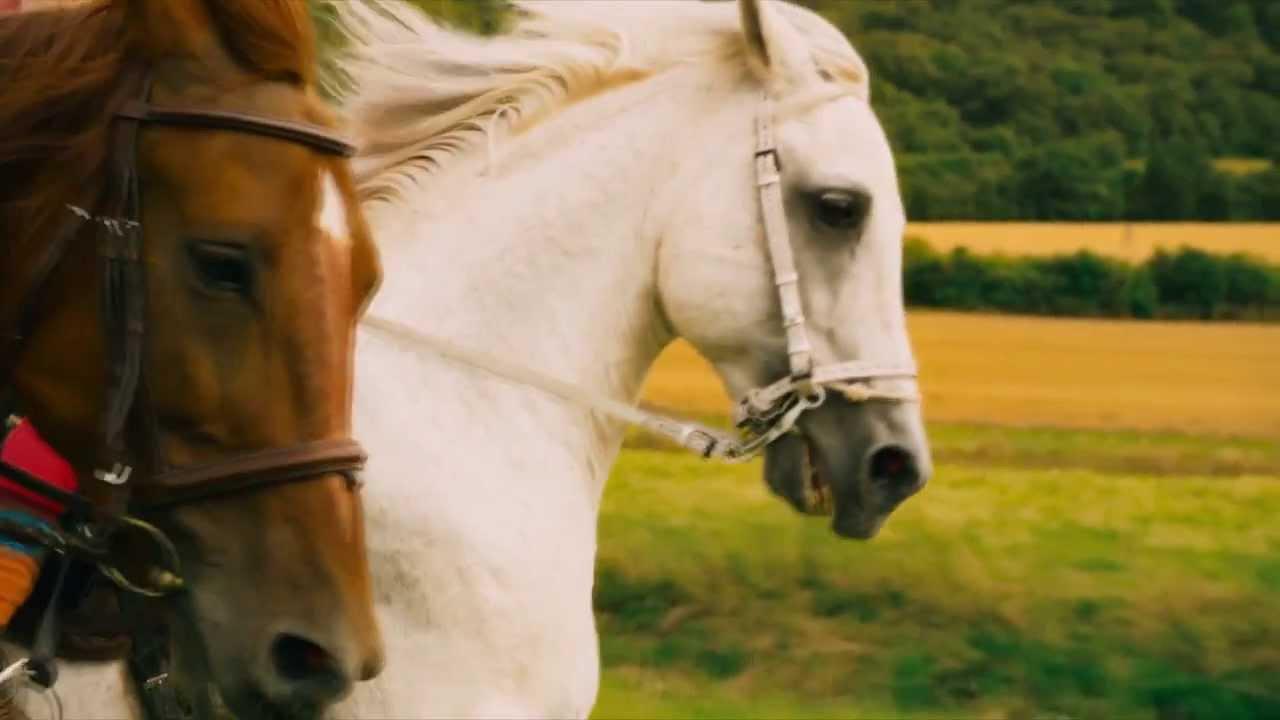 ausmalbilder bibi und tina mit pferde  28 images  bibi