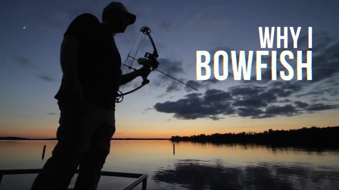 AMS Bowfishing - AMS Bowfishing