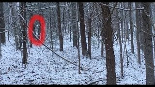 Boom! Bigfoot Sasquatch Could Not Stay Hidden From Us In The Snow!