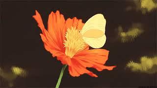 travis-scott-butterfly-effect%ef%be%89-slowed-reverb-%ef%be%89.jpg