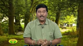 Kaalaimalar  Episode - 1740 Sindhikka Sila Nimidangal