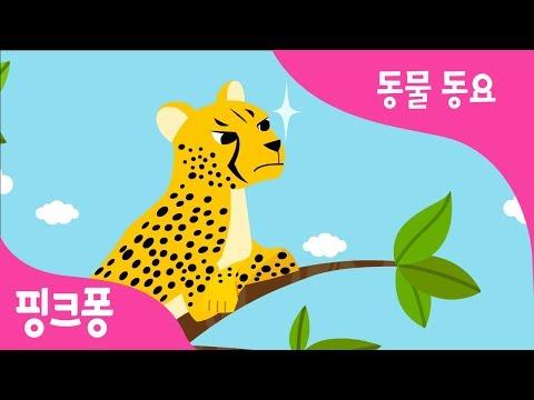 치타 뱅뱅뱅 | 치타송 | 동물 동요 | 핑크퐁! 인기동요