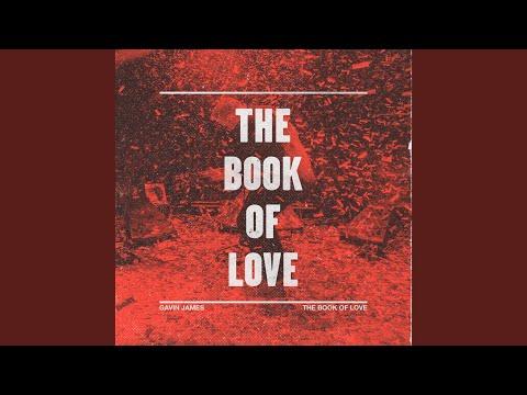 The Book Of Love (JOY. Rework)