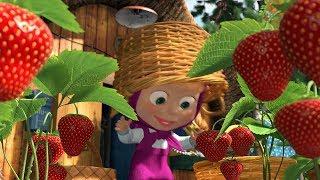 Cô bé masha và chú gấu xiếc | Cô bé siêu quậy và chú gấu xiếc | Masha trồng hoa quả trong vườn