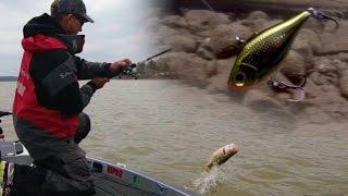 Fishing Lipless Crankbaits for Springtime Bass