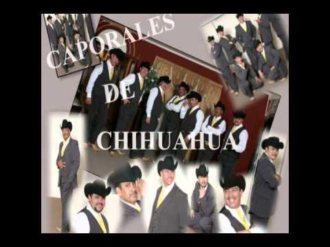 La Suavecita Los Caporales De Chihuahua