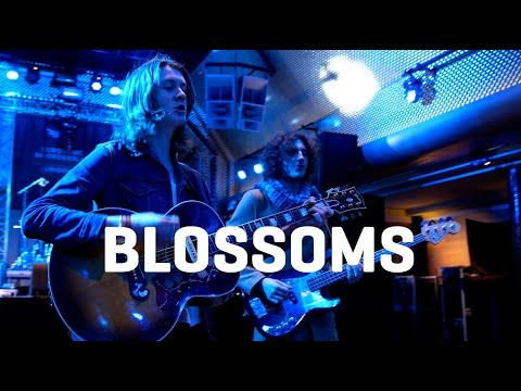 Blossoms - Blown Rose - Acoustique (Eurosonic 2016)
