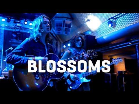 Blossoms - Blown Rose - Acoustique (Eurosonic 2016)