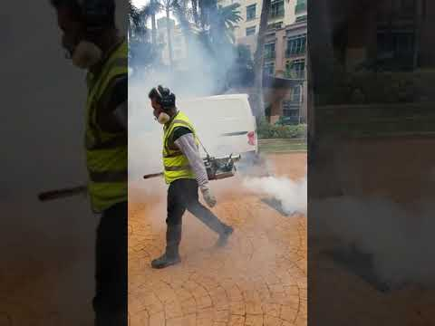 Mosquito Control Services at Greencare Singapore