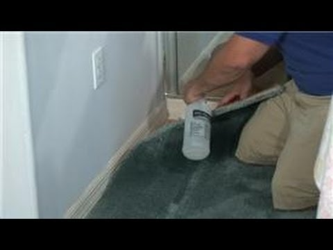 Carpet Cleaning How To Remove Cat Urine Odor From Carpet Youtube