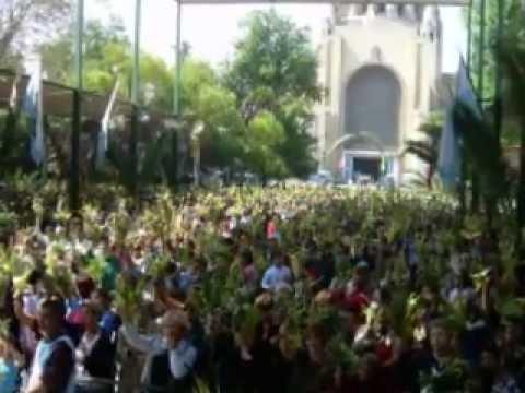 MADRE -  JUNTO A TI MARIA - Manantial de Lourdes