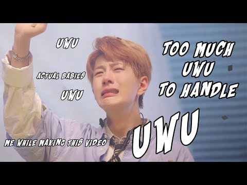 Golden Child vines that make me UWU