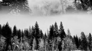 FAUNUS - 'Winter - Gestation' (lyrics)