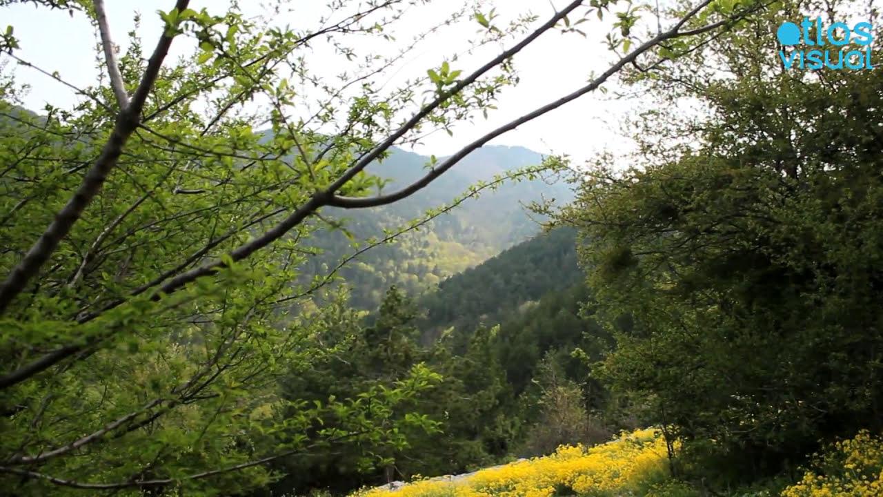 Mount Olympus Macedonia Greece