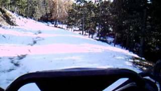 Buggy en la nieve