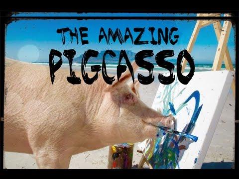 THE AMAZING PIGCASSO
