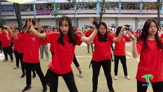 Việt Nam những chuyến đi - 12A15